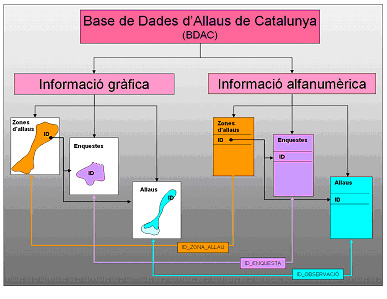 Database of avalanches in Catalonia (BDAC). Infraestructura ... on